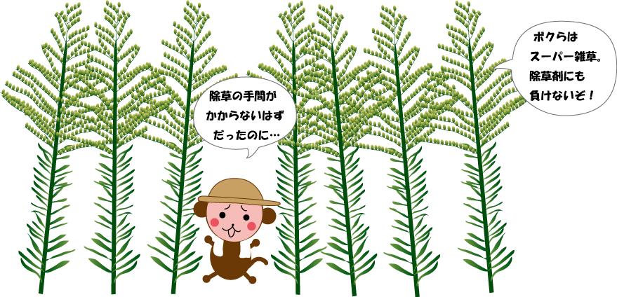 スーパー雑草-2