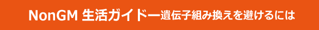 ページタイトル-NonGM生活ガイド