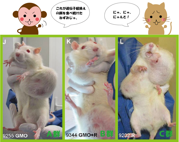 「遺伝子組み換え 癌」の画像検索結果