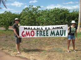 gmo-free-maui