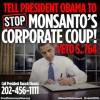 FDN_ObamaCorpCoupVetoS764
